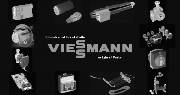 VIESSMANN 7318849 Zerstäubungskopf
