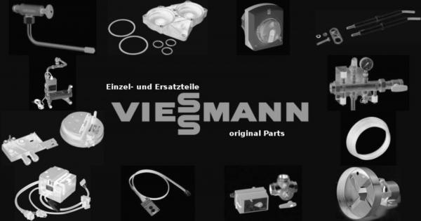 VIESSMANN 7838737 Aschetür