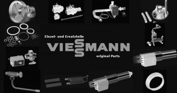 VIESSMANN 9589483 Reinigungsbürste 30/20 x 80 L=900