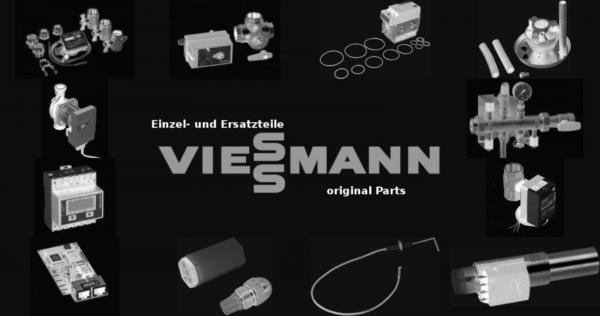 VIESSMANN 7219960 Durchflussbegrenzer (2 Stück)