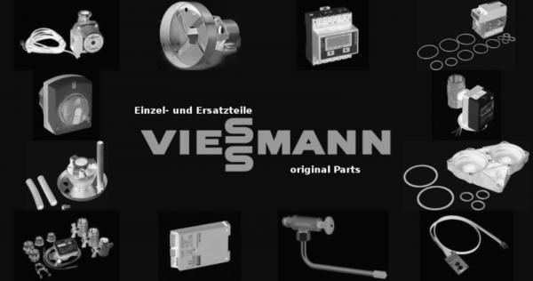 VIESSMANN 7205280 Kesseltür BV46/1