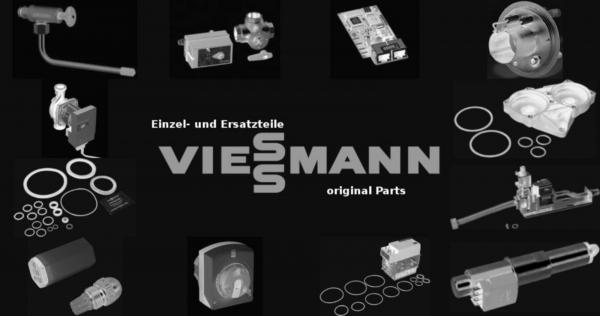 VIESSMANN 7404361 Sicherung T 1,0A 250V (10 Stück) (10 Stück)