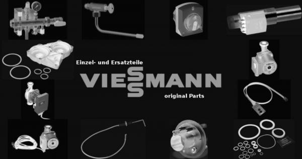 VIESSMANN 7314043 Kesseltür