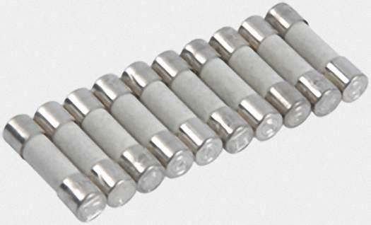VIESSMANN 7404363 Sicherung T 2,0A 250V (10 Stück) (10 Stück)