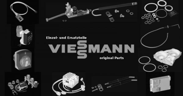 VIESSMANN 7811946 Frontplatteneinschub mit Display