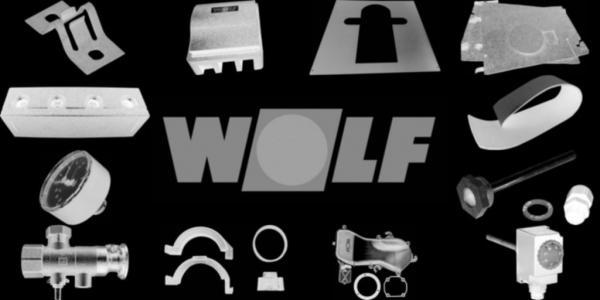 WOLF 240002599 Kesseltür D410 lackiert(ohne Schaulochdeckel, Isolierstein,Dichtung usw.)(ersetzt Art