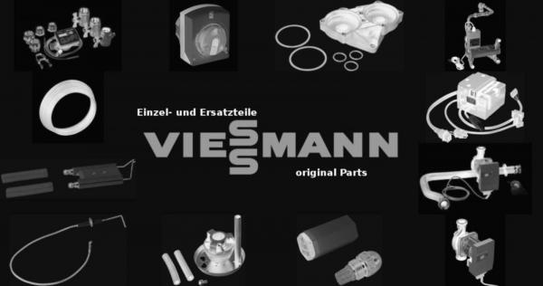 VIESSMANN 7314017 Kesseltür BV46/1