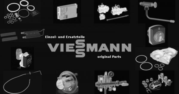 VIESSMANN 7829123 Dichtungssatz 2'' (2 Stück)