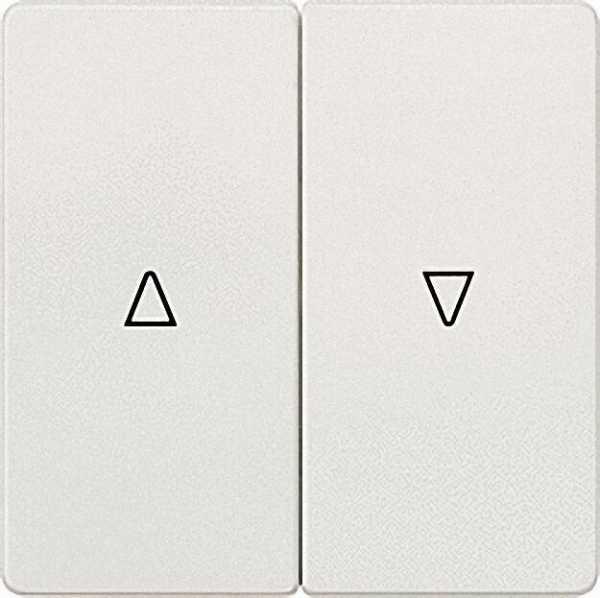 Wippe-2fach mit Symbolen Auf/Ab elektroweiß/ 55mm x 55mm Schutzart IP20 / 1 Stück
