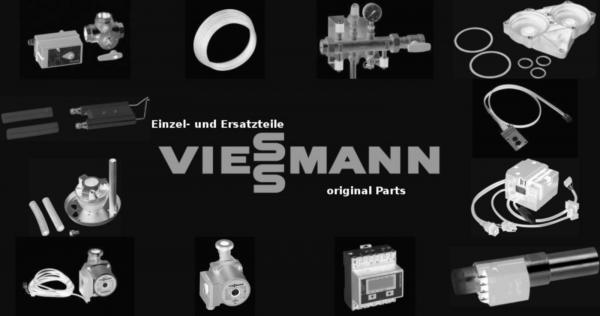 VIESSMANN 7838500 Parameterspeicherstick CM2 170kW