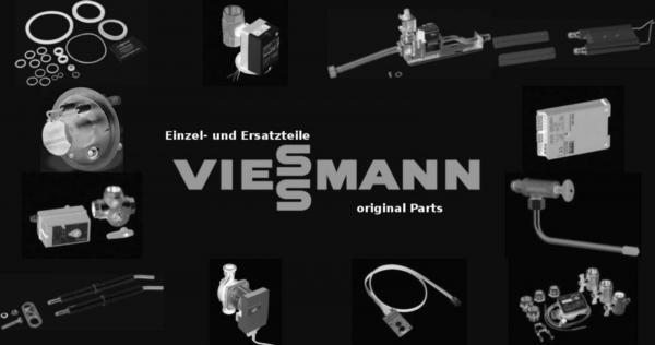 VIESSMANN 7830236 Revisionstür