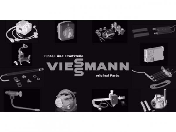 Viessmann Klappe 5204811