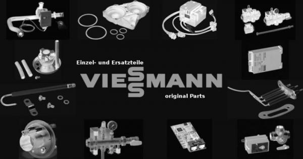 VIESSMANN 7324580 Tür 1