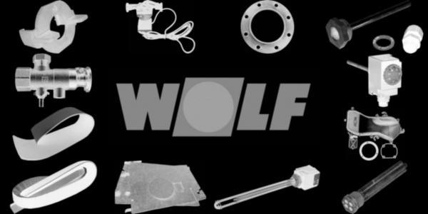 WOLF 240004099 Kesseltür D462 lackiert(ohne Schaulochdeckel, Isolierstein,Dichtung usw.)(ersetzt Art