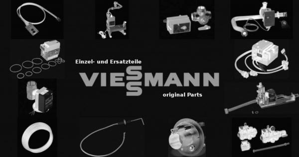 VIESSMANN 7839835 Manometer 10 bar