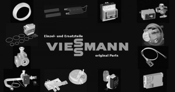VIESSMANN 5063745 Schmelzsicherung