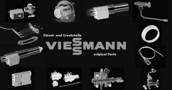 VIESSMANN 7404394 Beipack G-Sicherungen 1,6 A