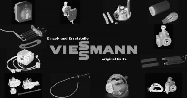 VIESSMANN 7404357 Sicherung T 0,125A 250V (10 Stück) (10 Stück)