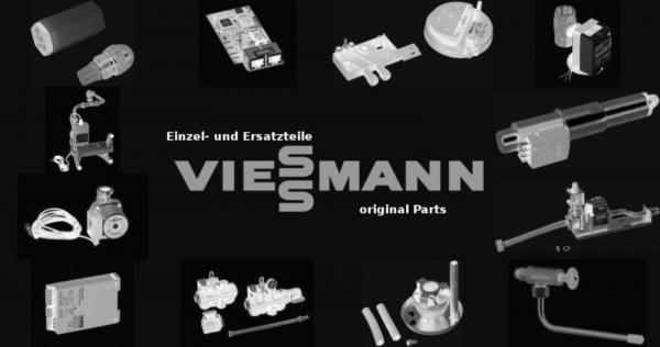 VIESSMANN 7841528 Sicherung T 3,15A 250V (10 Stück)