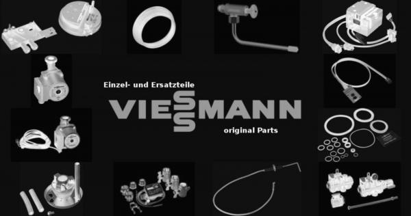 VIESSMANN 7241172 Kesseltür BV42/1