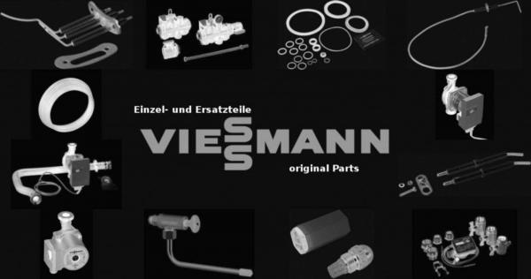 VIESSMANN 7840080 Guss-Stabanode