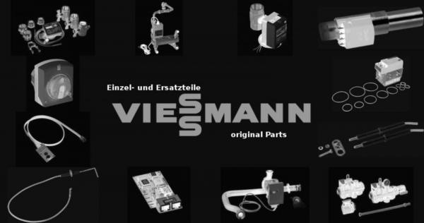 VIESSMANN 7832500 Revisionstür