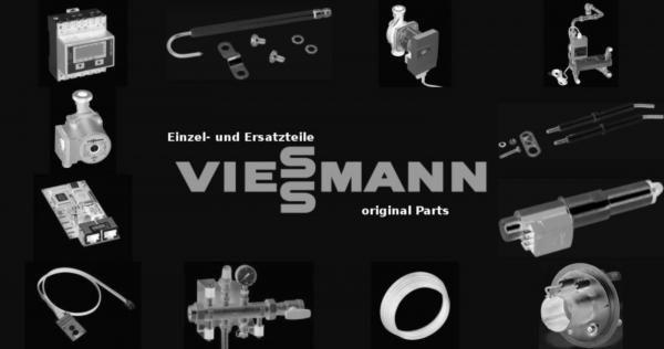 VIESSMANN 9589343 Mannlochverschluss OAB51 320 x 420
