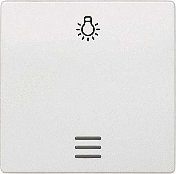 Wippe mit Symbol Licht und Fenster titanweiß/ 55mm x 55mm Schutzart IP20 / 1 Stück