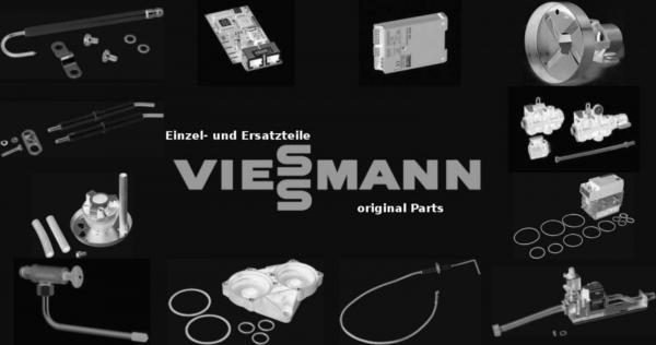 VIESSMANN 7816217 Sicherung T 2,0A 250V (1 Stück)