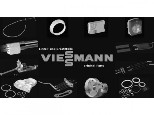 Viessmann Druckschlauch 7868402