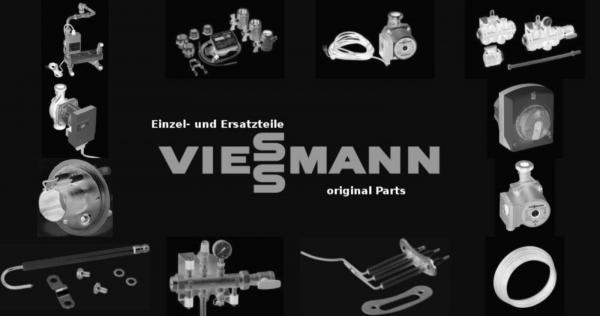 VIESSMANN 7308289 Kesseltür ZN050/062