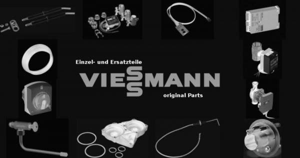 VIESSMANN 9596420 Feinsicherung 4,0 A/250