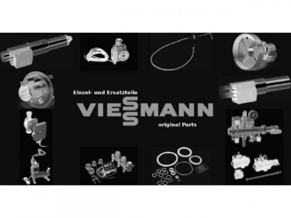 Viessmann Renox-Stab D= 6 x 285 5066349