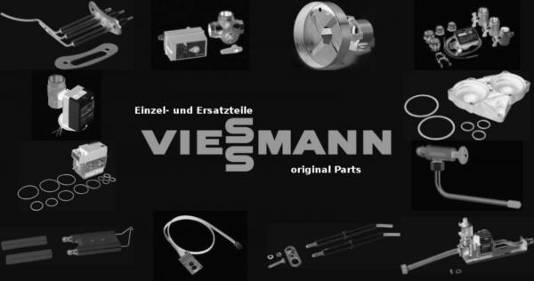 VIESSMANN 7839345 Sicherung T10A (5 Stück)