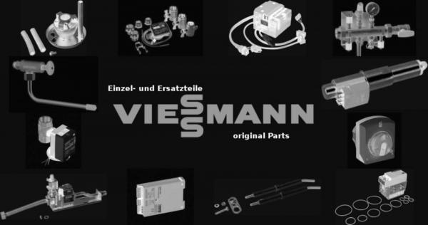 VIESSMANN 9589217 Vakuumpumpe DV P 2/Edelst-K.VA