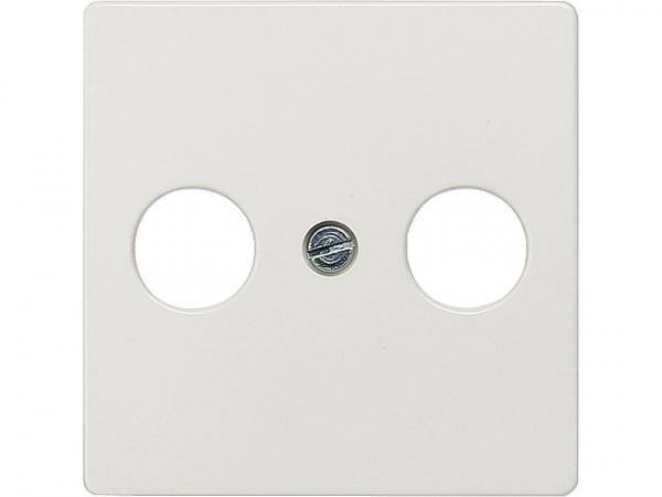 Abdeckplatte für TV/SAT-Anschluss aluminiummetallic/ Schutzart IP20 2-Loch-Ausführung / 1 Stück