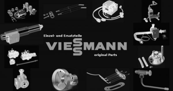 VIESSMANN 7830237 Revisionstür
