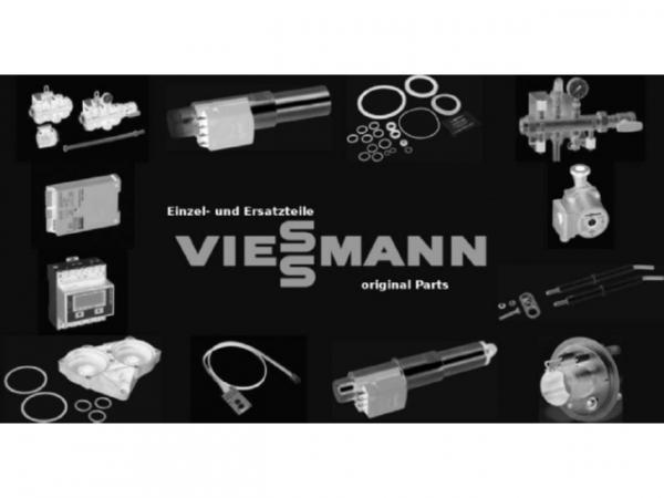 Viessmann Schlauch Rücklauf 7868685