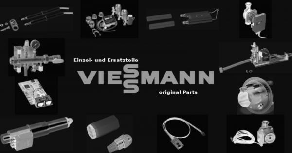 VIESSMANN 9589920 Rückschlagklappe R 1 G 80 A