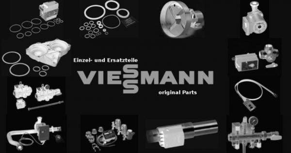 VIESSMANN 5076490 Zeiger