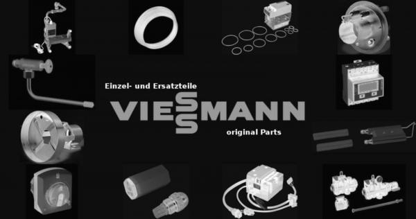 VIESSMANN 7829865 Schlauch G1 1/2 SW52 L=400