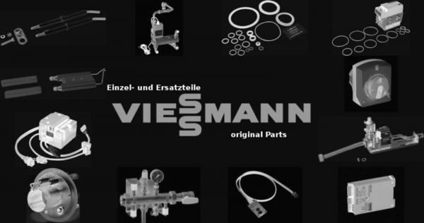 VIESSMANN 7308516 Kernrohr RN021 Schweiz