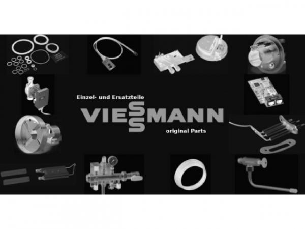 Viessmann Codierstecker 5091:C02 N10 F20.05 LPG 7877063