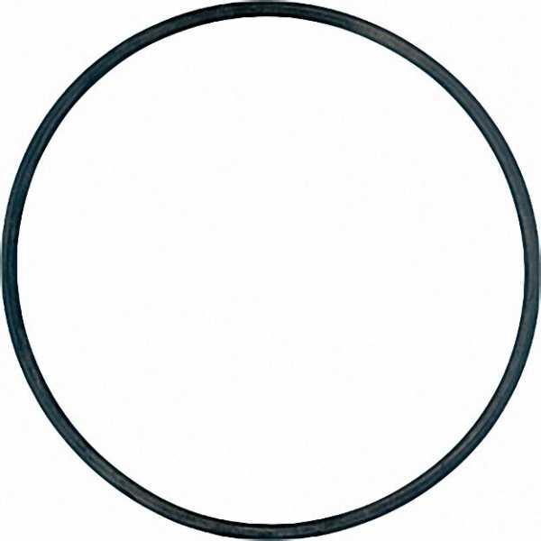 O-Ring 94 x 3 Viton 1 Stück