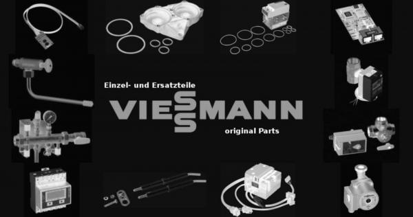 VIESSMANN 7252732 Messnippel R 1/8''