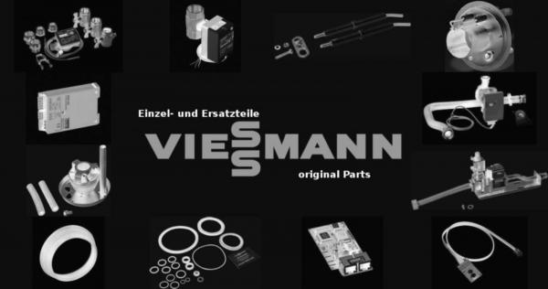 VIESSMANN 7404891 Abgasklappenmotor