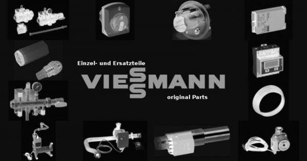 VIESSMANN 7308512 Kernrohr RN008 Schweiz